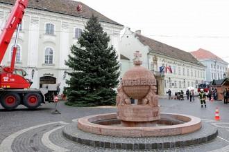 Megérkezett a város karácsonyfája